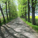 Straße nach Piasek