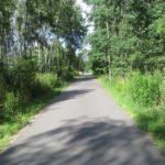 Grüner Radweg