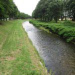 Neiße in Zittau