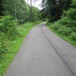Neißeradweg nach Andelska Hora