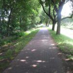 Radweg an der Mandau